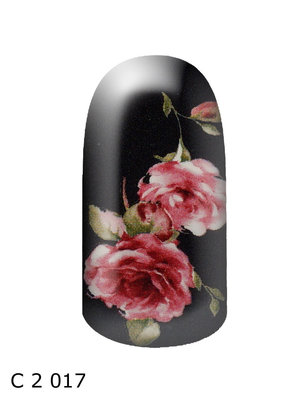 bloem zwart roze